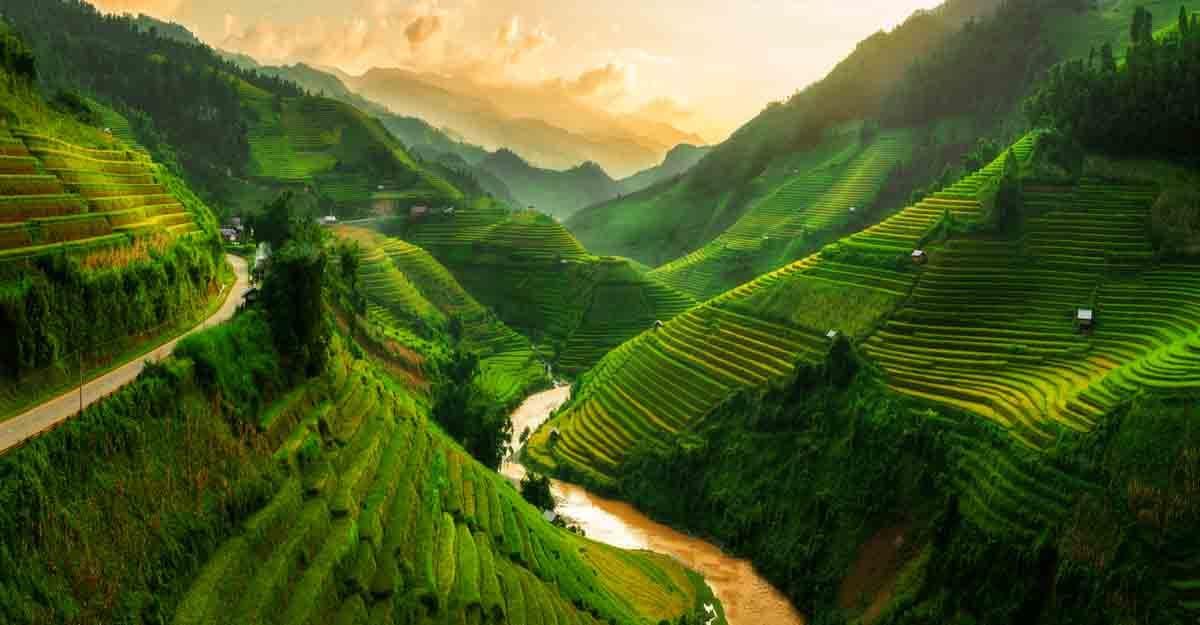 sopa-vietnam