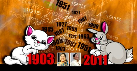 cat-rabbit-year-prediction