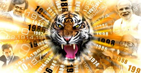 tiger-year