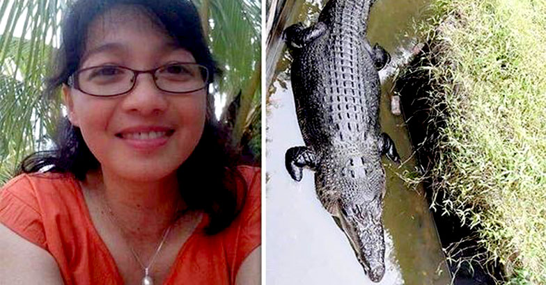 Indonesian scientist killed and eaten by large crocodile