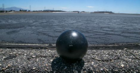 ball-shade-ball