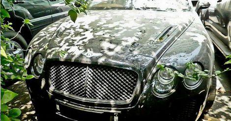 luxurycars-2