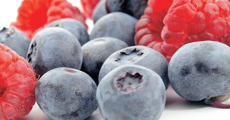 rainy-season-fruits
