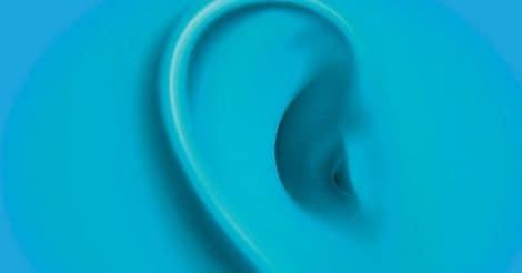 ear-anatomy