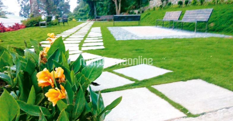 landscaping-new-trends