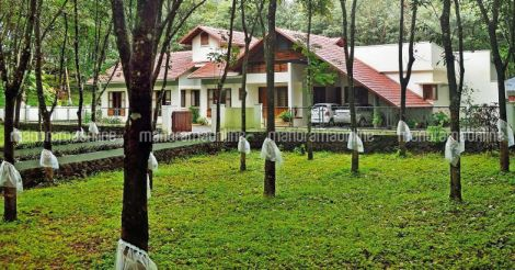 tropical-cool-house-koothattukulam