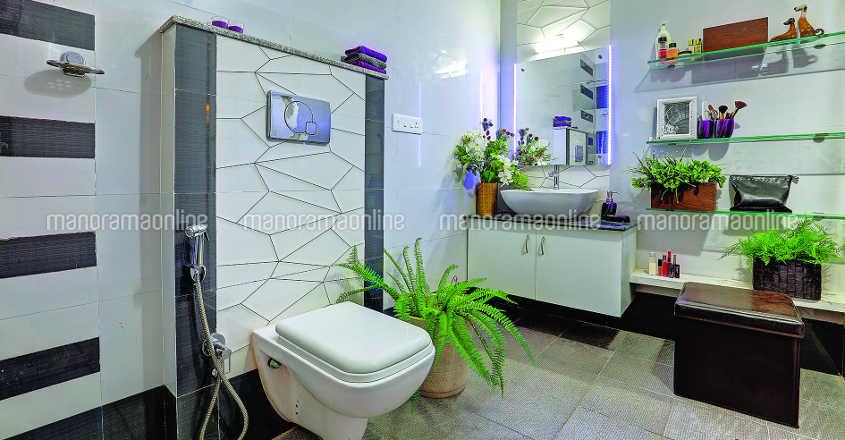 aluva-renovated-home-toilet