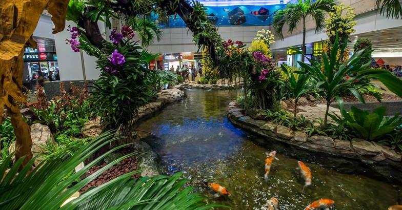 changi-airport-singapore-park