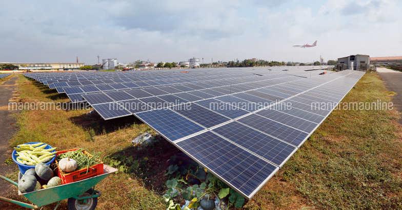 cial-solar-panel-vegetable-farming