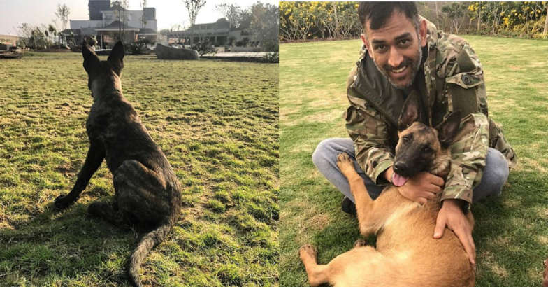 dhoni-with-dog