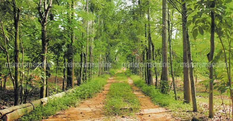greenpath-organic-state-green-farm