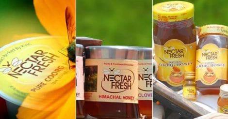nectar-fresh-coorg-honey