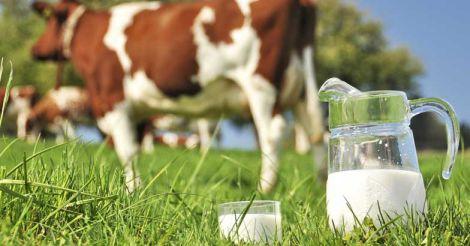 cow-milk-quality