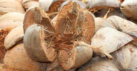 coconut-coir-fibre