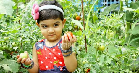 kid-child-with-tomato-vegetable