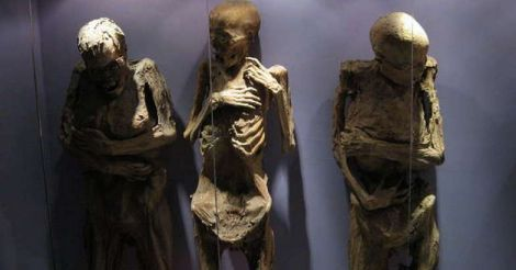 The Museum of the Mummies)