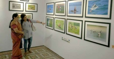 photo-muse-exibition