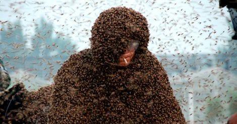 Beekeeper in China
