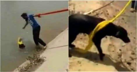 Man Uses Turban To Save Dog