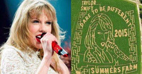 taylor-swift-corn-maze