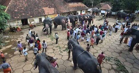 Guruvayur-Elephant