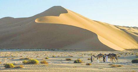 desert-011