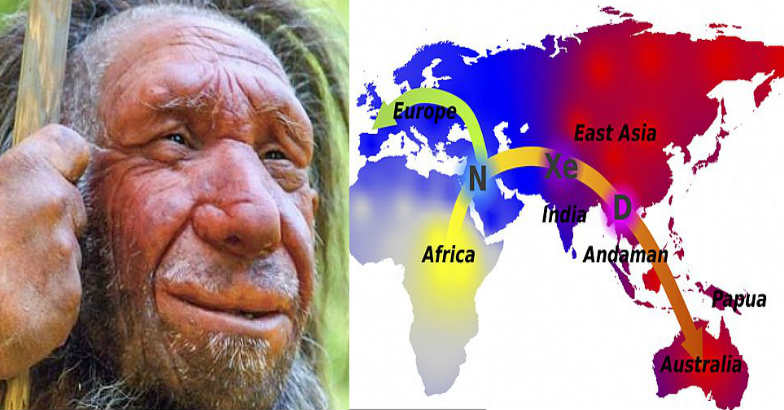 human-ancestor