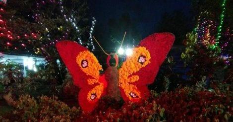 flower-show-munnar16