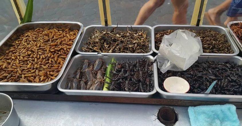 pattaya-food3