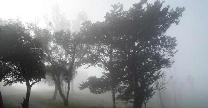 himavad-gopalaswamy-betta3