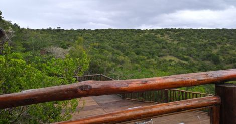 south-africa-trip1