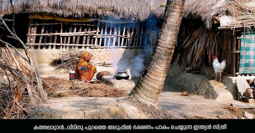 Sundarban6