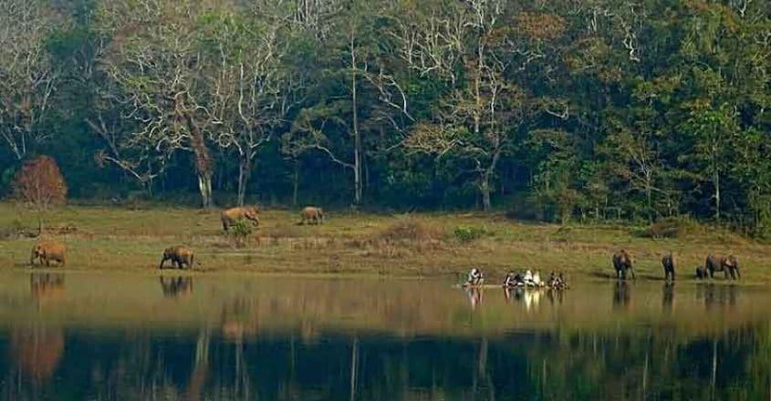 6tger-trekking.jpg.image.784.410