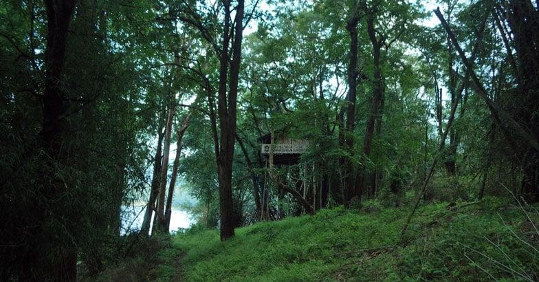 parambikulam-island–12