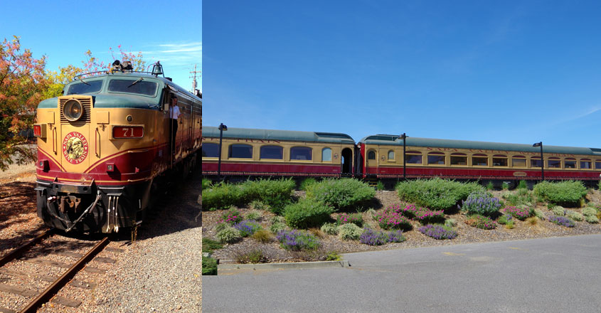 napa-train