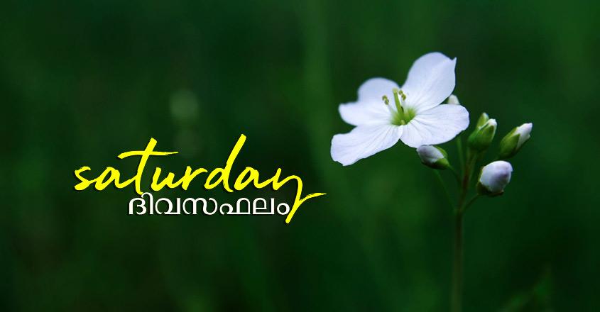 Saturday-Prediction-845