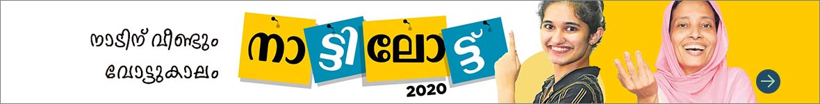 Local Body Elections 2020