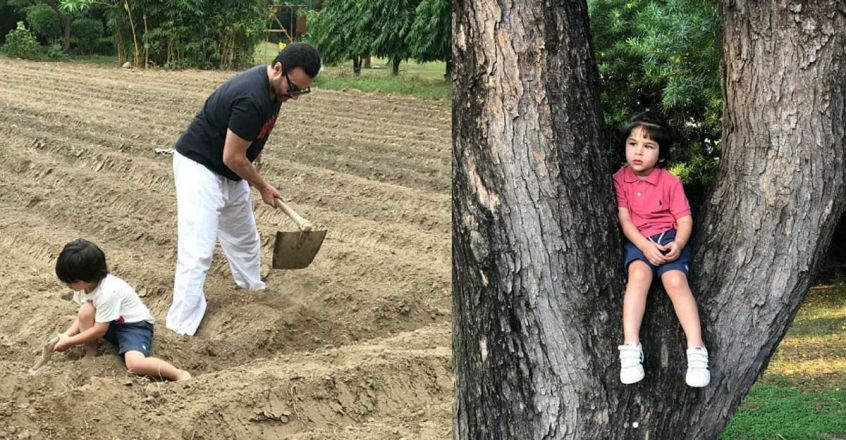 kareena-kapoor-post-photo-of-saif-and-taimur-planing-trees
