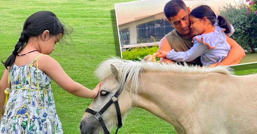 ziva-dhoni-shares-photo-with-her-new-friend-pony