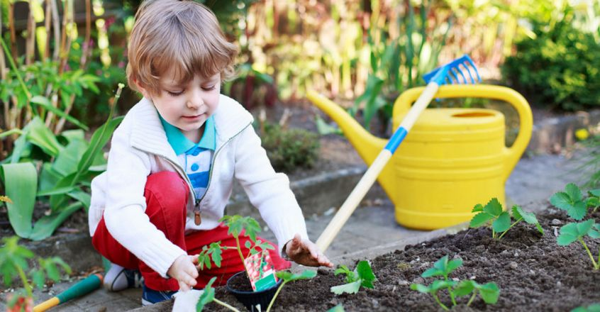 essential-life-skills-to-help-your-child-succeed