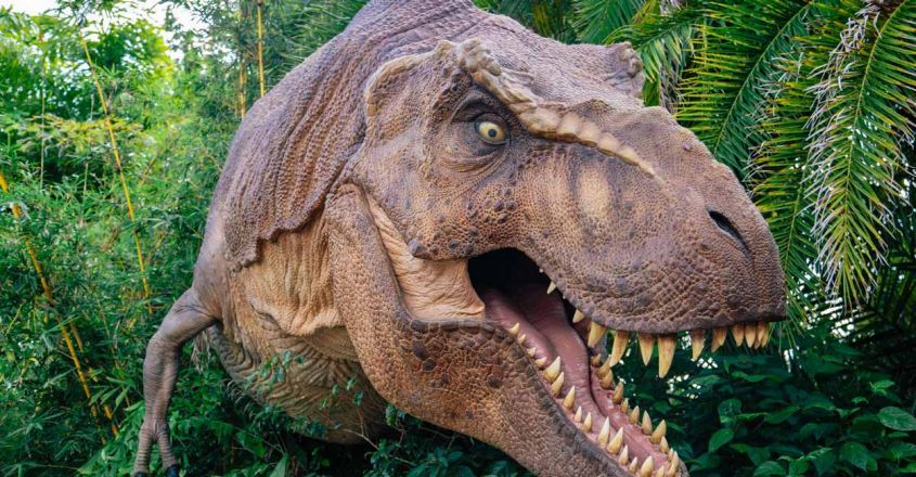 why-some-children-are-obsessed-over-dinosaurs-psychologists-say