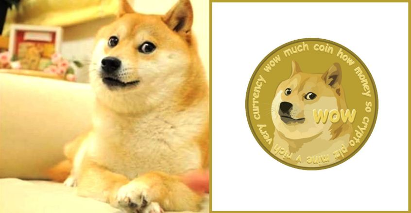 the-real-dog-behind-the-dogecoin-doge-meme