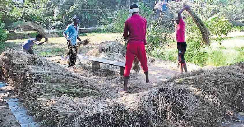 idukki-rajakumary-other-state-labours