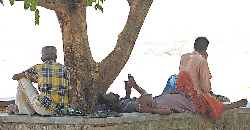 kollam-people-resting-under-tree
