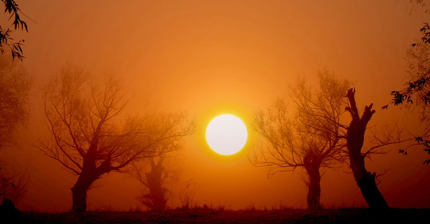 sun-hot4