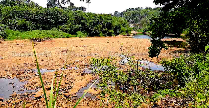 River Manimala