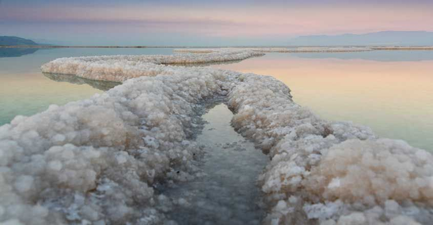 Salt Crystals in The Dead Sea