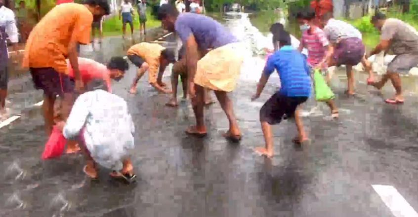 People catch fish on flooded road in Moncompu