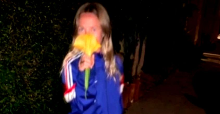 Woman 'accidentally drugs herself' after sniffing a 'beautiful' flower