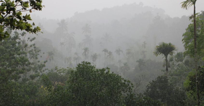 Another year of rain fury in Kerala?